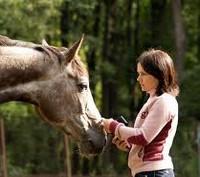 Животные врачи